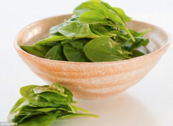 26CE0F0C00000578-3000711-Spinach_is_extremely_high_in_iron_potassium_and_magnesium_which_-a-17_1426780670198